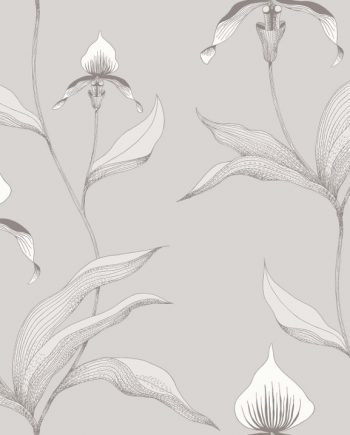Orchid 95/10055 Cole & Son