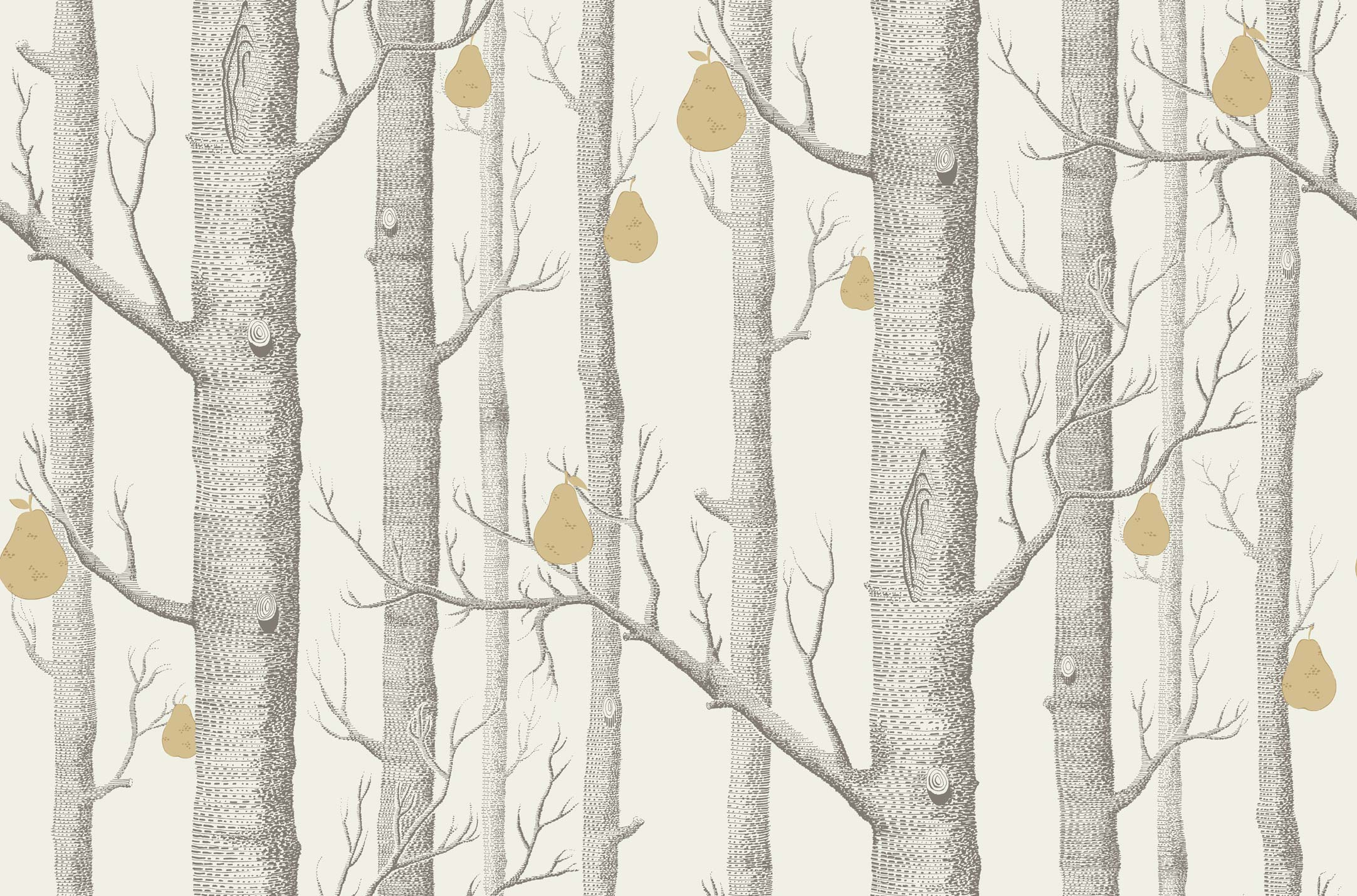Woods Pears 95-5032 wallpaper Cole Son Contemporary Restyled