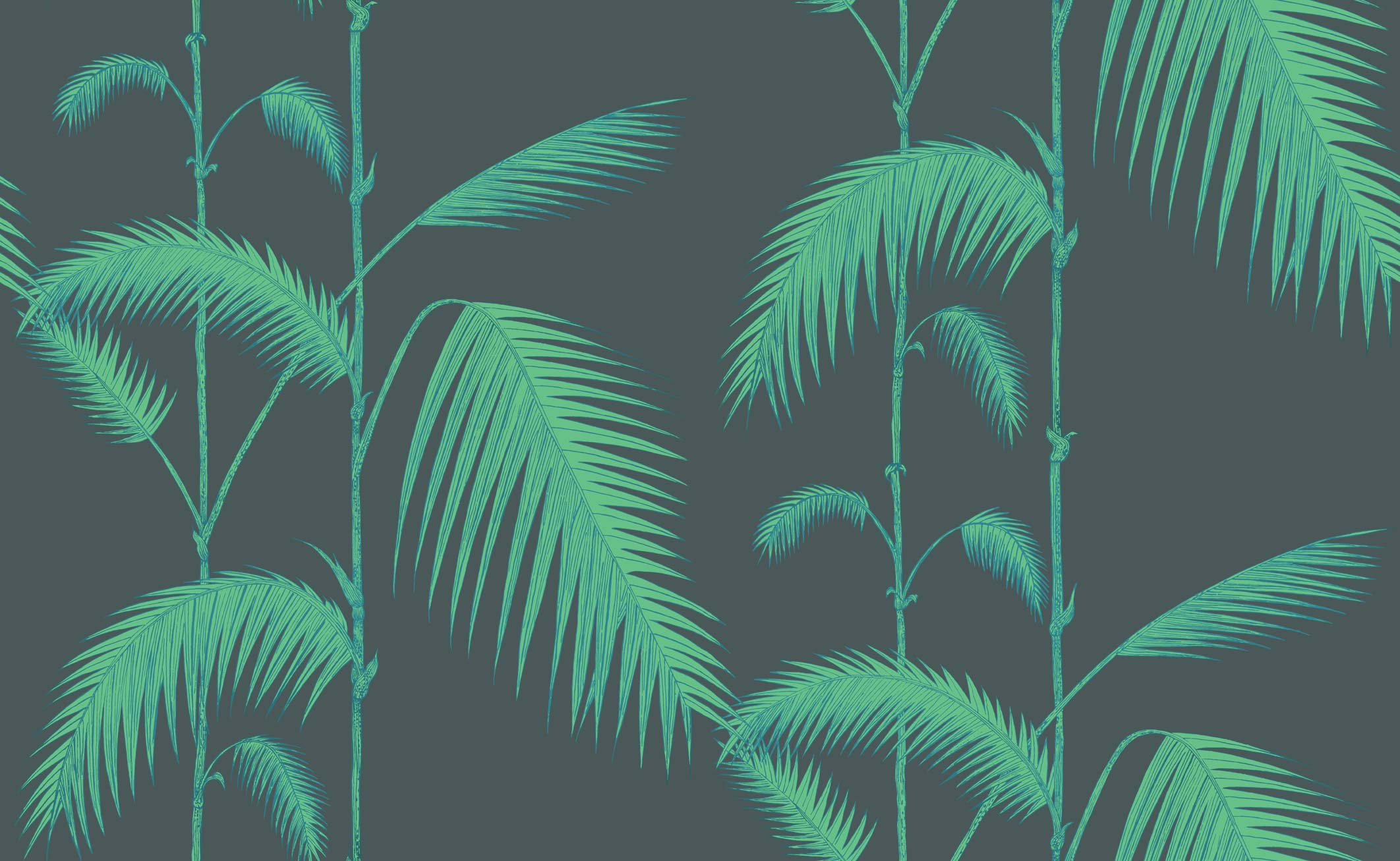 Cole & Son Icons palm leaves