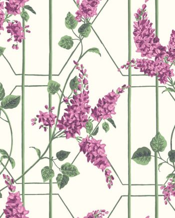 Cole & Son Wisteria 115/5013