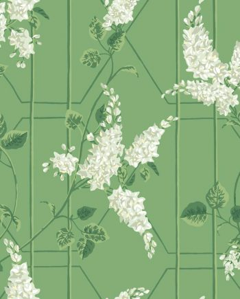 Cole & Son Wisteria 115/5016