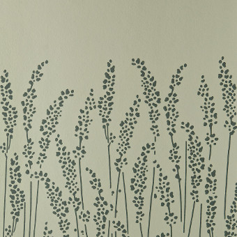Feathergrass 5