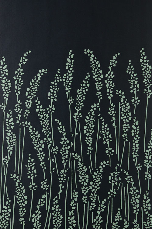 Feathergrass 6