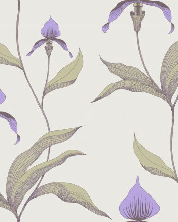 Cole & Son Orchid 66/4024 10