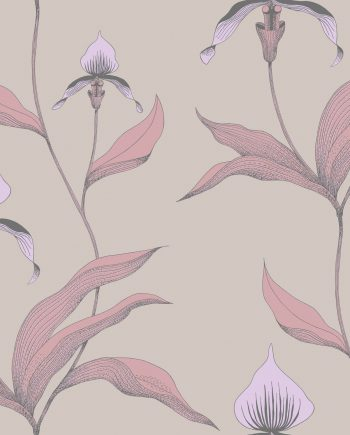 Cole & Son Orchid 66/4025 9