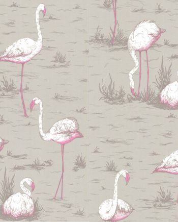 Cole & Son Flamingos 66/6042 2