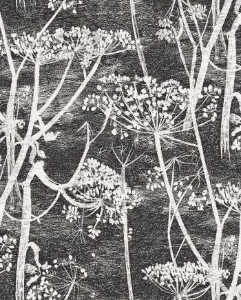 Cole & Son Cow Parsley 66/7046 6