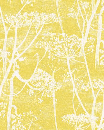 Cole & Son Cow Parsley 66/7051 1